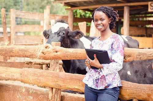 Charity Wayua, IBM Research – Africa
