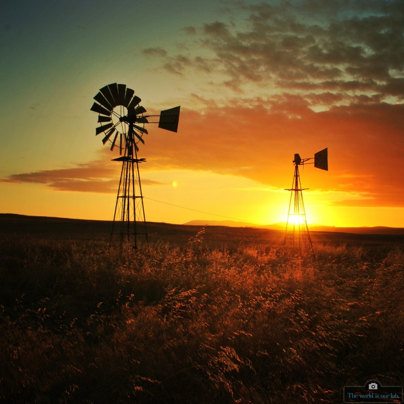 'Windpumps Provide Water' - by Nathan Stasin (Instagram: asterixorobelix), South Africa.