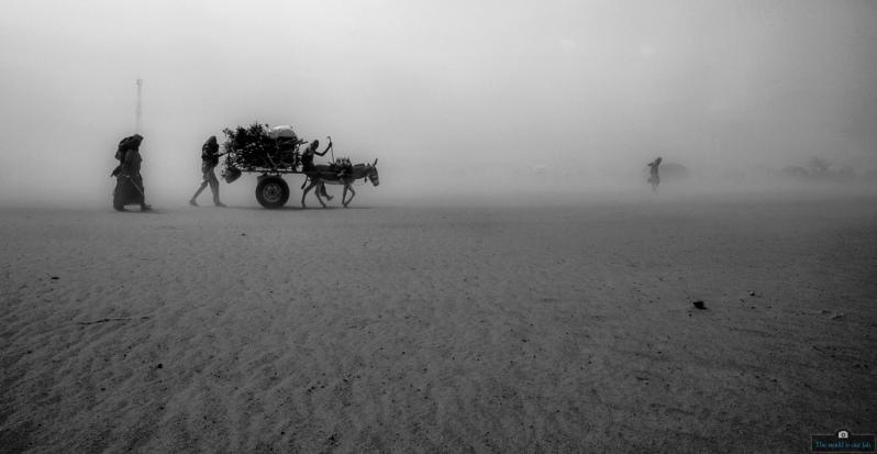 Caravan to Dadaab' - By Frank Odwesso, Kenya Fixer Agency.