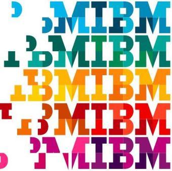 IBM Diversity1