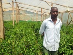 Program participant & his pepper farm in rural Kenya